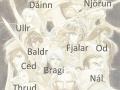12 Crusaders (labelled)